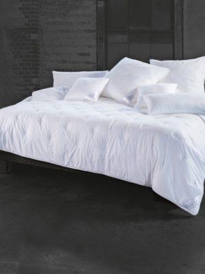 Duo Partnerdecke 280x240cm Bett